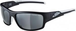 Sonnenbrille Alpina Testido - Pulsschlag Bike+Sport