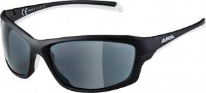 Sonnenbrille Alpina Dyfer - Pulsschlag Bike+Sport