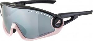 Alpina lunettes  5W1NG CM+