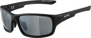 Alpina lunettes  Lyron S